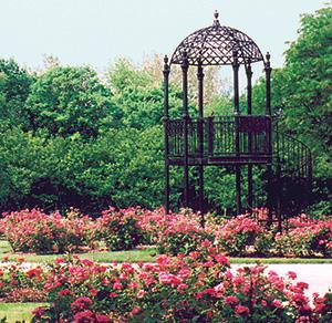 the park columbus park of roses